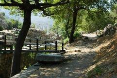 自然和古老废墟 免版税库存照片
