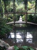 自然和平禅宗庭院  库存照片
