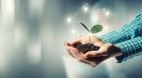 自然和技术互作用 免版税库存照片