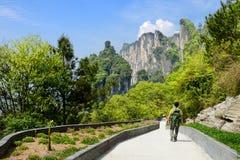 自然和旅客 图库摄影