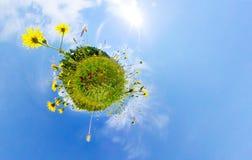 自然和环境概念 360对一个开花的草甸的作用 库存照片