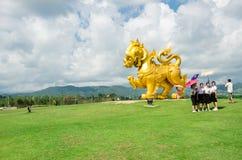自然和美丽的热带庭院在Singha公园清莱,泰国 免版税库存图片