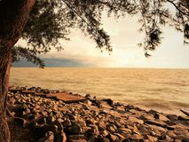 自然和美好的日落在椰树小屋海湾米里沙捞越马来西亚 库存照片