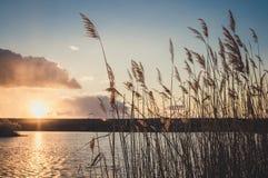 自然和谐  在湖的安静的日落在早期的春天 免版税图库摄影