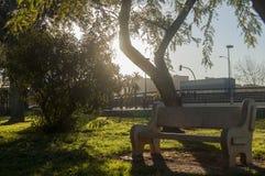 自然和长凳 图库摄影