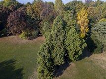 自然和风景:公园、秋天叶子、叶茂盛树和草甸,绿地的鸟瞰图 免版税图库摄影