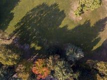自然和风景:公园、秋天叶子、叶茂盛树和草甸,绿地的鸟瞰图 免版税库存图片