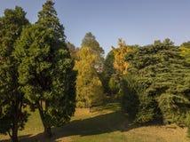 自然和风景:公园、秋天叶子、叶茂盛树和草甸,绿地的鸟瞰图 库存图片