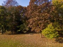 自然和风景:公园、秋天叶子、叶茂盛树和草甸,绿地的鸟瞰图 图库摄影