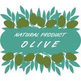 自然商标或标签用橄榄 免版税库存图片