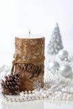 自然圣诞节的装饰 库存图片