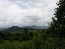 自然在印度 库存照片