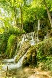自然在塞尔维亚Stara Planina 库存照片