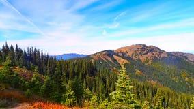 自然在奥林匹克国家公园 秋天 免版税库存图片
