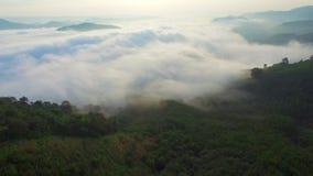 自然在山的雾薄雾鸟瞰图在日出期间 影视素材