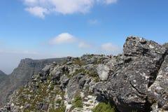 自然在桌山国家公园,开普敦南非 库存照片