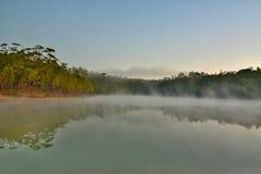 自然在泰国 库存照片