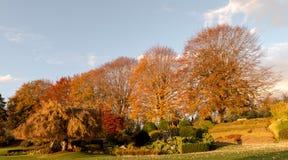 自然在秋天期间在温哥华加拿大2016年10月 库存图片