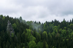 自然在Tustan 免版税库存照片