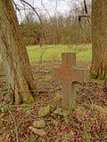 自然坟场本质上与石发怒介于中间的树干的 库存照片