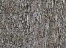 自然墙壁 库存图片