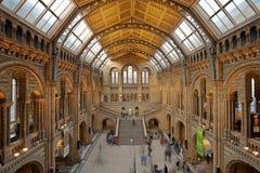 自然大厅历史记录主要的博物馆 图库摄影