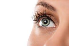 自然女性眼睛 免版税库存图片