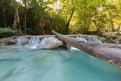 自然小河瀑布在深森林热带密林 免版税库存图片