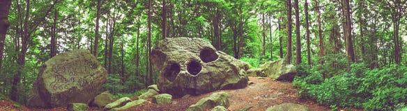 自然岩层全景 免版税库存照片