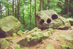 自然岩层全景 免版税库存图片