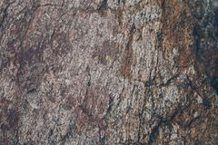 自然岩石墙壁纹理和背景 被构造的布朗老石表面 石墙纹理和背景特写镜头视图  免版税库存图片