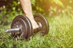自然庭院健身房 库存图片