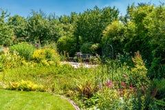自然庭院在夏天 免版税库存图片