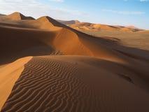 自然弯曲的土坎线和风吹生锈的红色在浩大的沙漠风景天际的沙丘和阴影的样式与树荫的 图库摄影