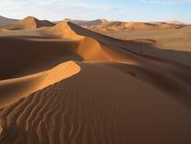 自然弯曲的土坎线和风吹生锈的红色在浩大的沙漠风景背景的沙丘和阴影的样式与树荫的 免版税库存图片
