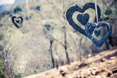 自然心脏 库存照片