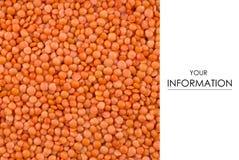 自然扁豆宏观纹理的食物 库存图片