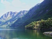 自然挪威夏天 水,森林海湾在一好日子 免版税库存照片