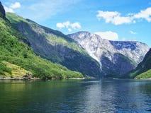自然挪威夏天 水,森林海湾在一好日子 免版税库存图片