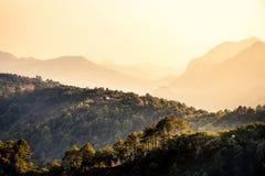 自然旅行概念:树和山有薄雾的夏天层数  库存照片
