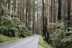 自然旅行 免版税库存照片