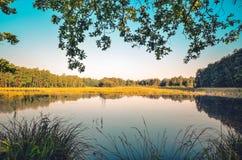 自然早晨风景  图库摄影