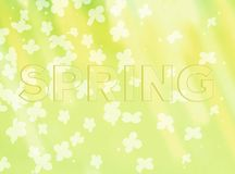 自然春天背景 免版税库存图片