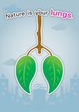 自然是您的肺。 免版税图库摄影