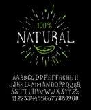 自然有机手写的字体 免版税库存照片