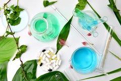 自然有机植物学和科学玻璃器皿,供选择的草本医学,自然护肤化妆美容品 免版税库存图片