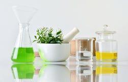 自然有机植物学和科学玻璃器皿,供选择的草本医学,自然护肤化妆美容品 免版税库存照片