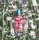 自然有桃红色液体的化妆用品玻璃瓶:补品、构成定象薄雾或者香水在草本叶子和野花 库存照片