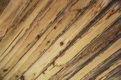 自然木板条天花板 免版税库存照片