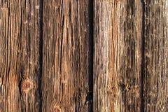 自然木背景 免版税库存照片